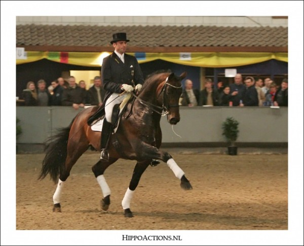 Lord Loxley succesvol in Prix St-Georges